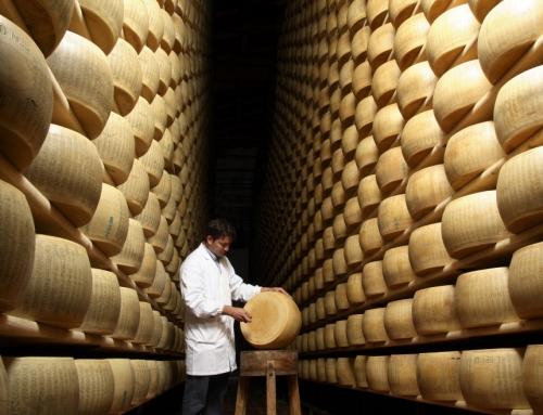Una visita ai Caseifici di Parma per scoprire i segreti del Parmigiano Reggiano