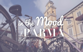 tour in bicicletta a parma