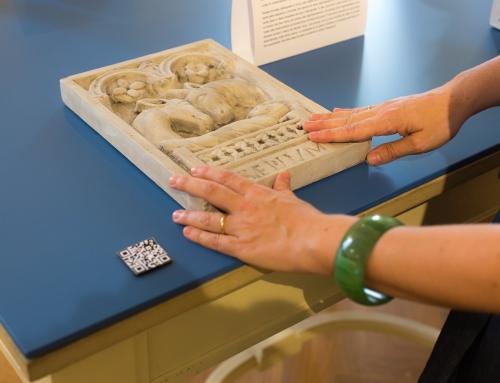 Si prega di toccare: una mostra inusuale al Museo Glauco Lombardi